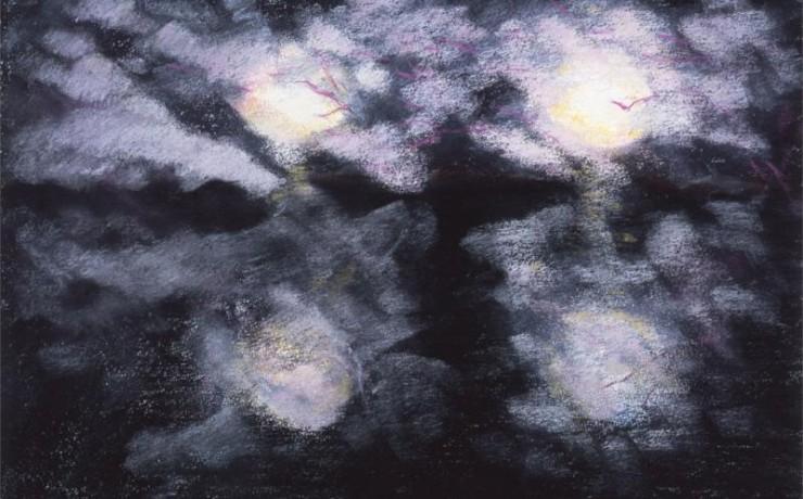 井の頭公園の夜桜