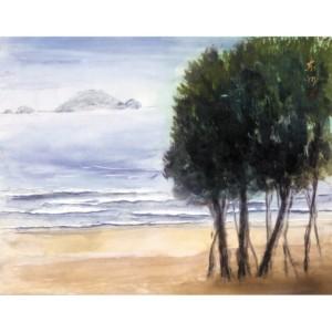 志賀島の浜辺