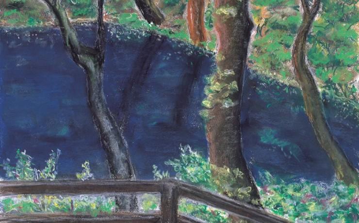 白神山地の神秘の青池