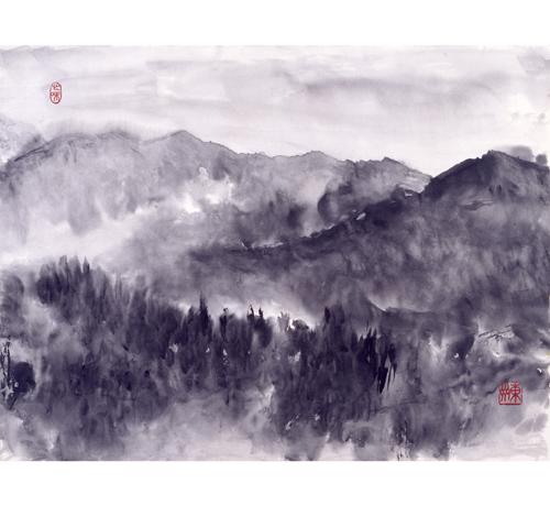 白峰村から見た白山