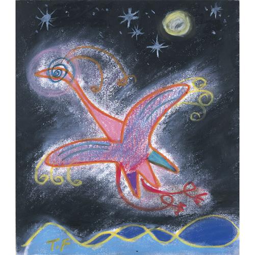 雌島雄島に飛び立つ火の鳥